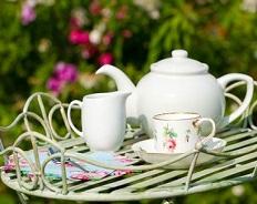 Немцы опередили остальных европейцев по любви к чаю. А чем ответим мы (опрос внутри)?