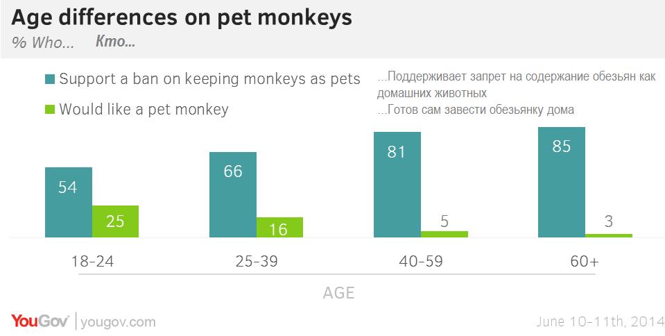 Судьба домашних обезьянок в руках общественного мнения. А что Вы думает о содержании экзотических животных дома (опрос внутри)?