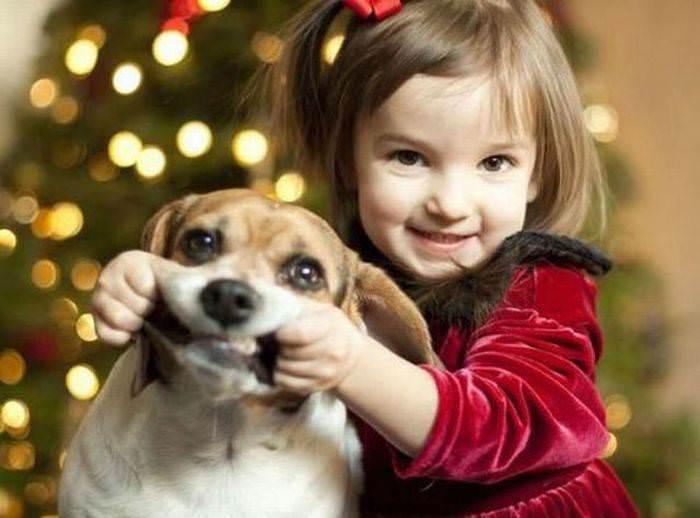 Американцы выбрали подарки для детей и домашних животных