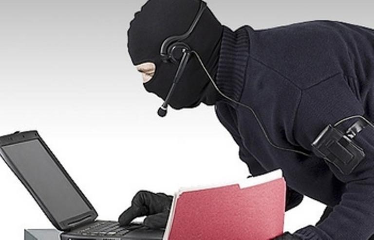В США киберпреступность привлекла внимание социологов
